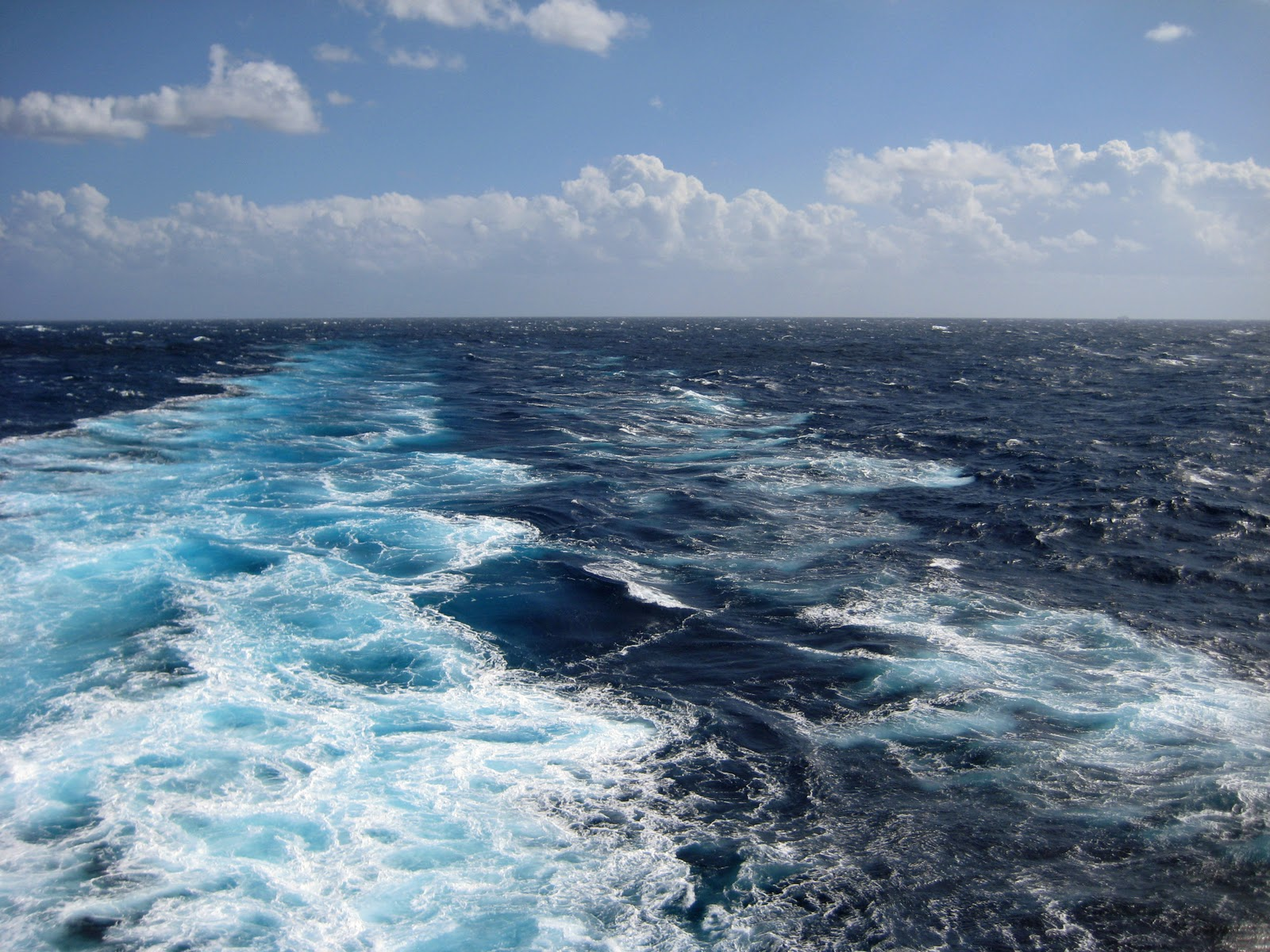 waters edge homeowners association